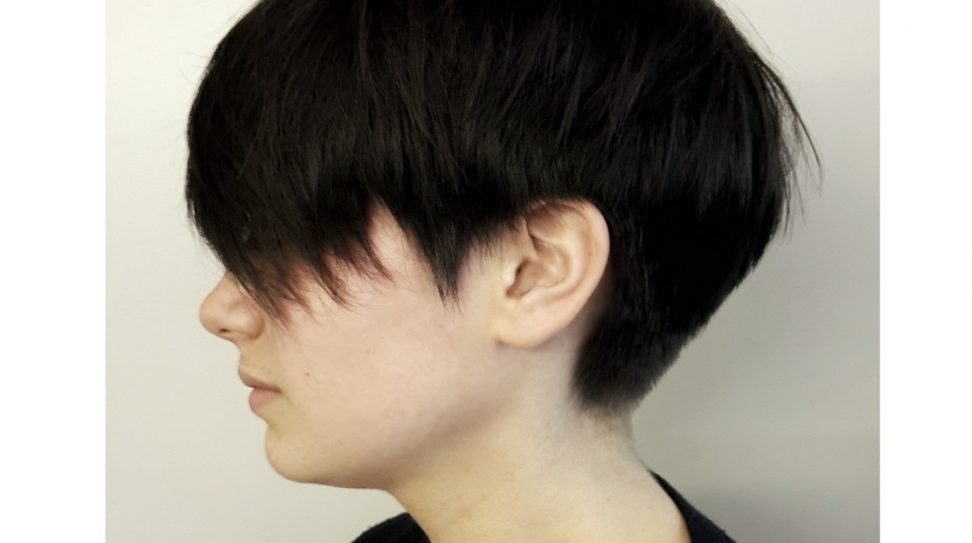 Short Hairstyle by Antoine